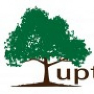 uptreehr consulting